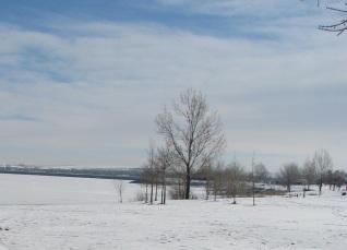 Snowy Colorado Landscape
